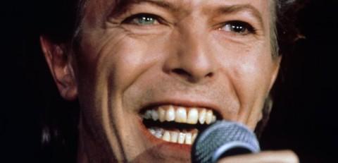 De Sjonnies geschokt door overlijden David Bowie